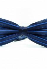 Papion bleumarin cu dungi albastre