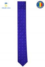 Cravata ingusta albastra