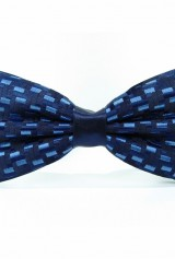 Papion bleumarin cu albastru