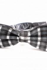 Papion dungat negru gri alb